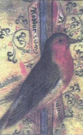 robin draw