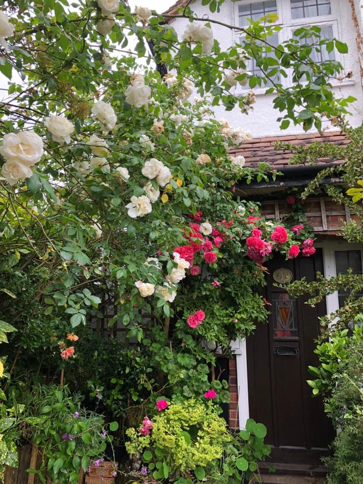 RosesFrontDoor5