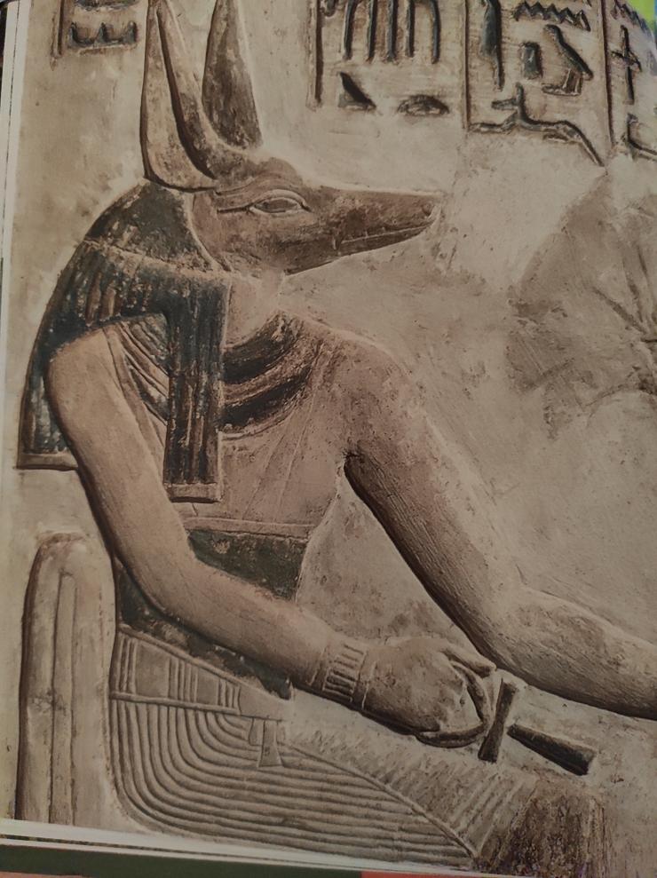 EgyptianJackal