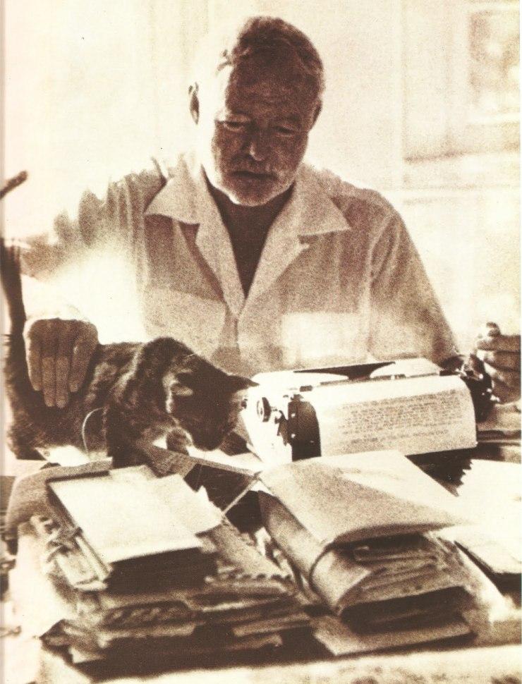HemingwayCat
