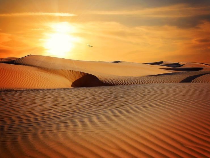 SaharaDunes