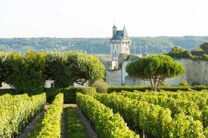 LoireValleyVineyards