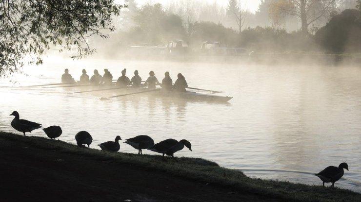 DucksRowersOxford