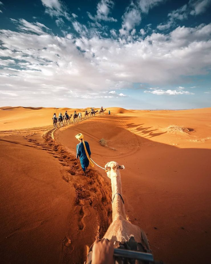 Bedouin4